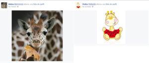 É uma charada amigo, quem errar tem que trocar a foto do perfil pela girafinha