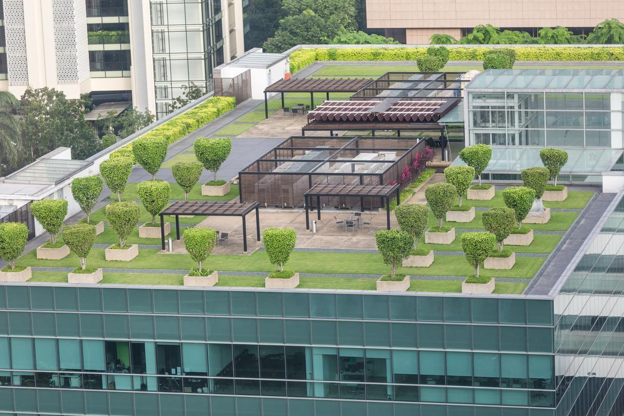 Telhados verdes como proposta para grandes centros urbanos