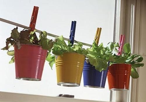 Horta para espaços pequenos