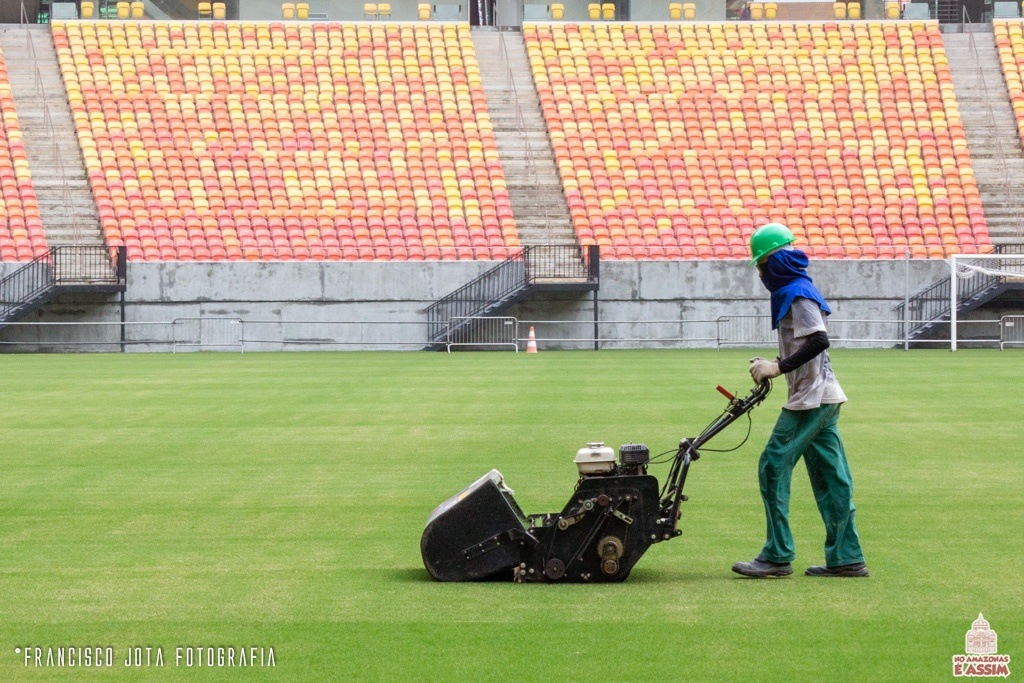 Trabalhos intensos para a grama do estádio ficar um verdadeiro tapete.