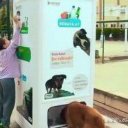 Máquina troca Garrafas Pet por Ração