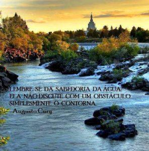 A água nunca discute com seus obstáculos, os contorna.