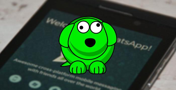WhatsDog: Saiba quando seus contatos ficam online no Whatsapp