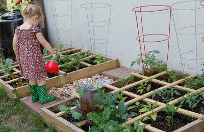 Conheça a cidade com hortas que oferecem alimentos gratuitos a seus moradores