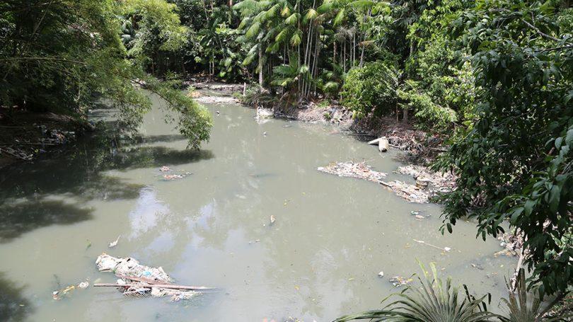Igarapé do Mindu / Foto : Amazonas e Mais