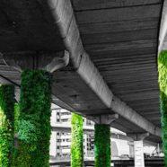 México transforma colunas de viadutos em jardins verticais